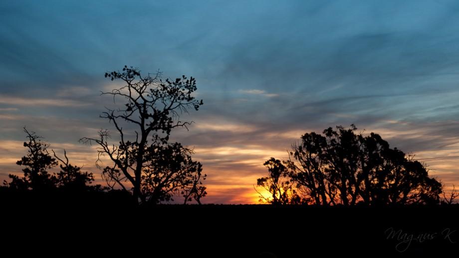 solnedgang-001
